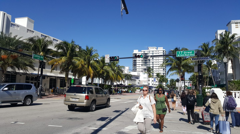 staceessmoothie, stacees smoothie, stacee's smoothie, miami, streets of miami, miami streets, miami heat, palm trees, shop in miami, miami shopping