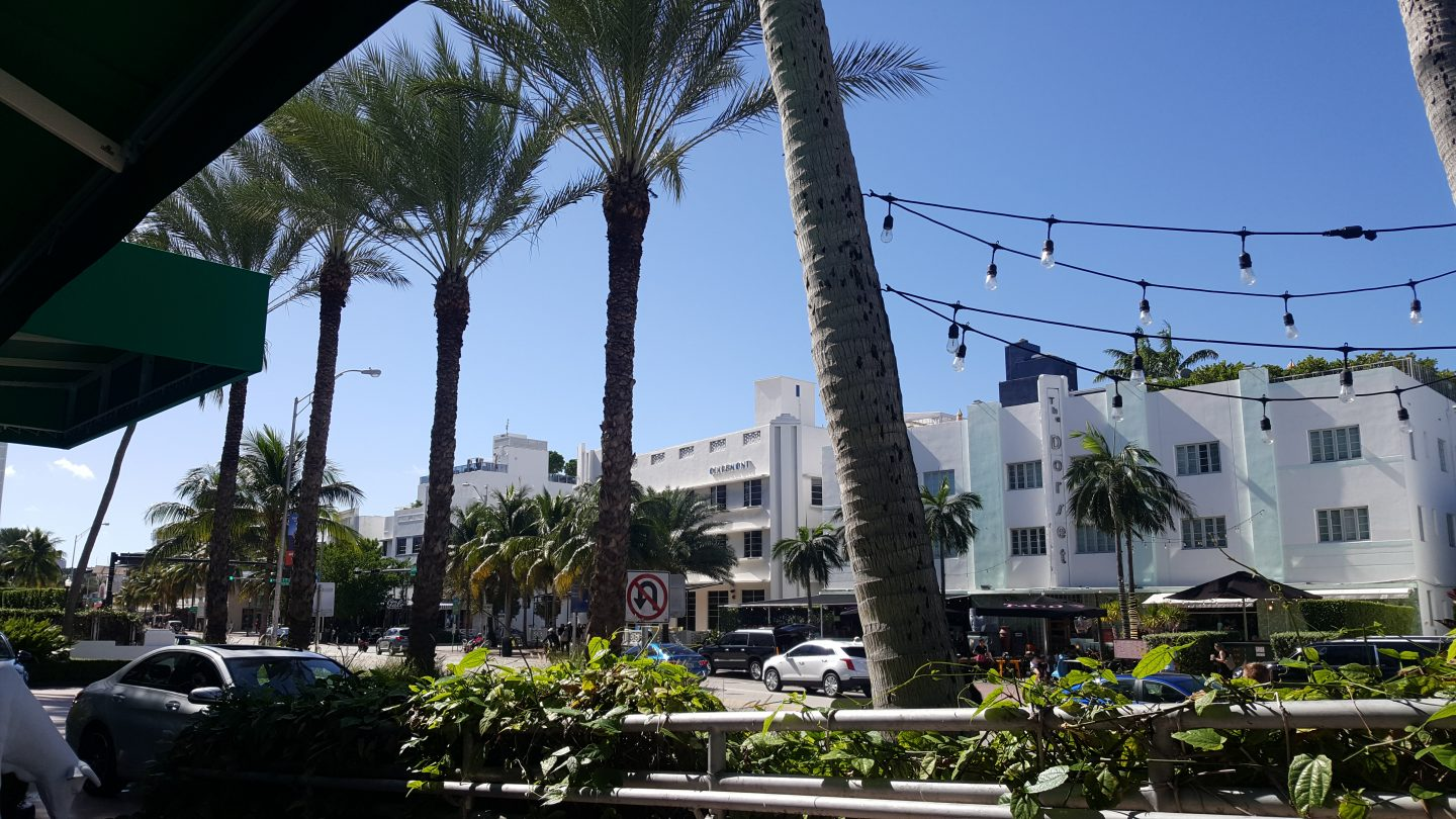 al fresco dining, staceessmoothie, stacees smoothie, stacee's smoothie, miami, streets of miami, miami streets, miami heat, palm trees, shop in miami, miami shopping, miami dining